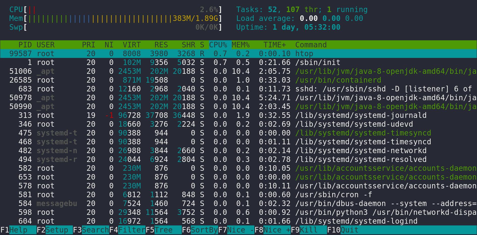 przykładowy wynik działania komendy htop w Linux